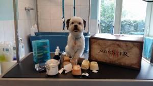 De nieuwe zeepjes, en de hond van de workshop